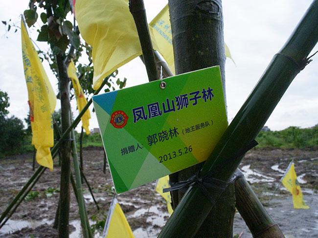 地王服务队会长--卡酷尚KAKUSAN创始人郭晓林先生捐赠的树苗