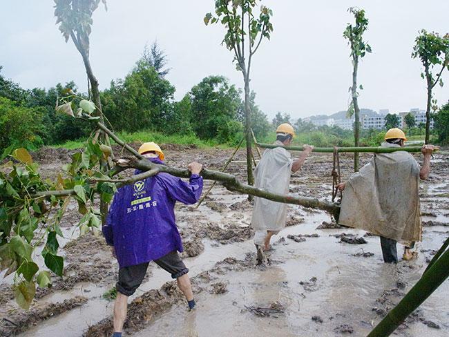 雨中涌跌参与活动的人们